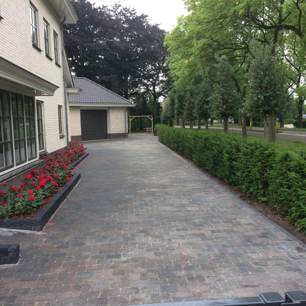 Grote onderhoudsvriendelijke tuin in Beesd