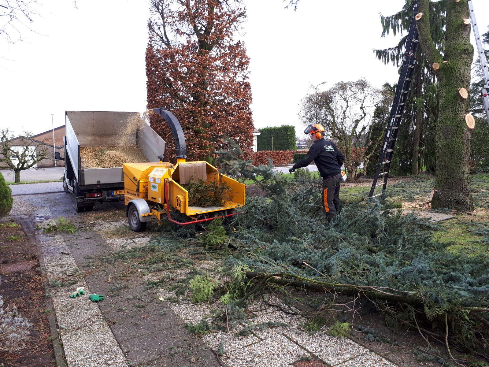 GardenMaster Kroeze » Stormschade? Wij brengen uw tuin weer op orde!